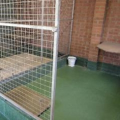 Dog kennel flooring Chester le Street County Durham