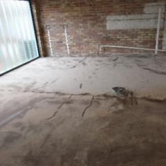 Concrete substrate primed with epoxy resin primer